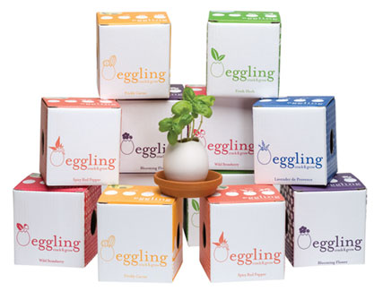 Eggling1