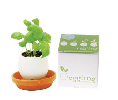 Eggling3